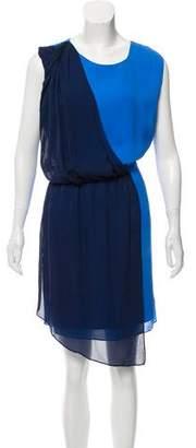 Elizabeth and James Silk Sleeveless Mini Dress