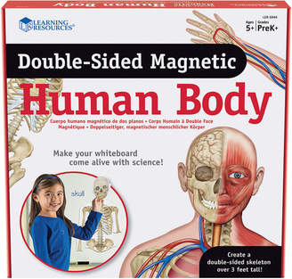 Educational Insights Double-Sided Magnetic Human Body