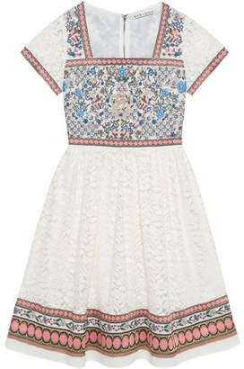 Alice + Olivia Alice+olivia Embroidered Cotton-Blend And Lace Paneled Dress