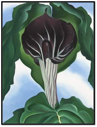 Museums.Co Jack-in-the-Pulpit No. 3 by Georgia O'Keeffe Artblock