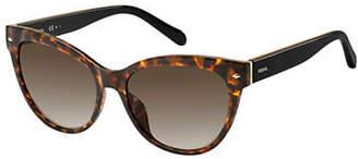 Fossil 2058-S 54mm Tortoise Butterfly Sunglasses