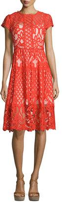 Parker Talulah Cap-Sleeve Lace Dress, Flare $288 thestylecure.com