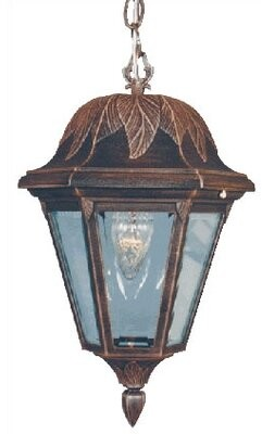 Special Lite Products Floral Medium 1-Light Outdoor Hanging Lantern Special Lite Products
