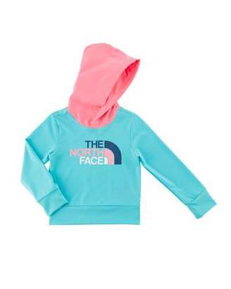 The North Face Hike/Water Hooded Logo Tee, Size 2-4T