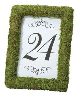 Lillian Rose Moss Table Picture Frame