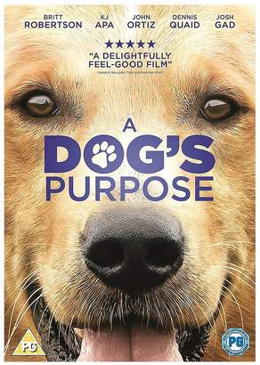 A Dogs Purpose DVD