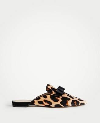 Ann Taylor Elsie Leopard Print Velvet Bow Slides