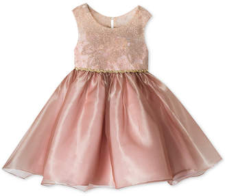 Rare Editions Toddler Girls Embroidered Organza Party Dress