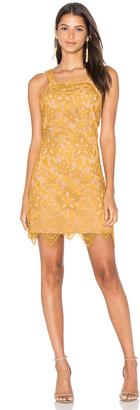 WAYF Orleans Lace Mini Dress $98 thestylecure.com