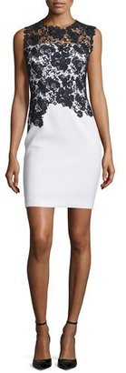Elie Tahari Weslee Sheath Dress with Lace Bodice $398 thestylecure.com