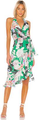 Parker Addie Dress