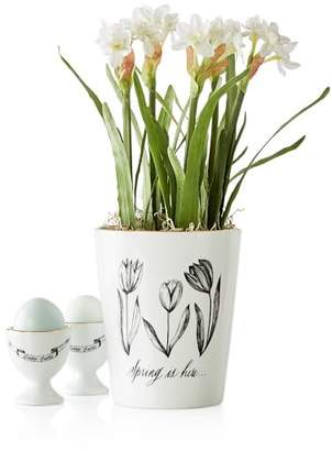 Maybelle Calligraphy Cachepot