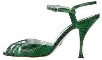 Dolce & Gabbana Watersnake Ankle Strap Sandals