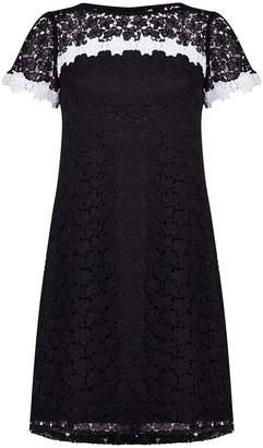 Next Womens Adrianna Papell Black Ditsy Lace Shift Dress