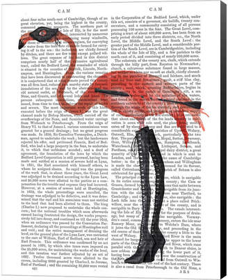 Flamingo With Kinky Boots By Fab Funky Canvas Art