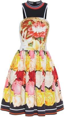 Mary Katrantzou Densis Rosa Alba-print mini dress