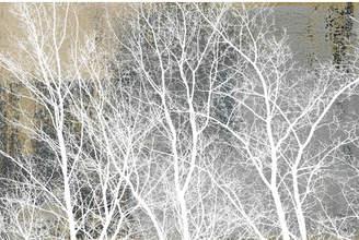 Parvez Taj Frosty White Branches Canvas Wall Art