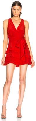 IRO Blutie Dress