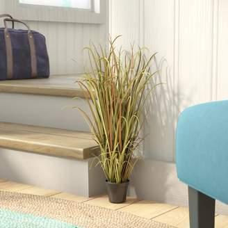 Beachcrest Home Artificial Grass in Pot