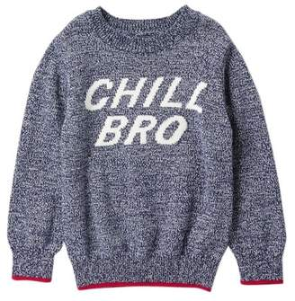 Joe Fresh Graphic Crew Neck Sweater (Toddler & Little Boys)