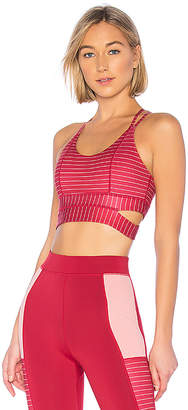 lovewave Caitlin Sports Bra