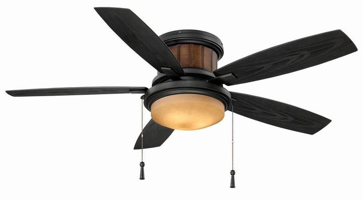 Hampton Bay Roanoke 48 in. Indoor/Outdoor Iron Ceiling Fan