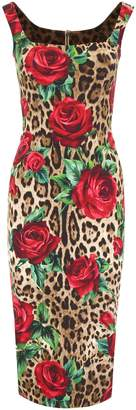 Dolce & Gabbana Leopard And Roses Print Dress