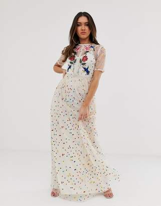 Frock and Frill floral and bird embroidered maxi dress in allover rainbow polka print