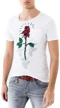 T-Shirt T SHIRT MANICA CORTA STAMPATA
