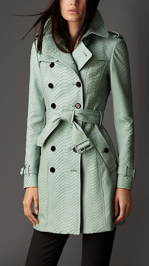 Burberry Mid-Length Python Trench Coat