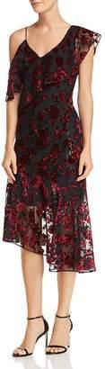 Parker Ilana Floral Velvet Dress