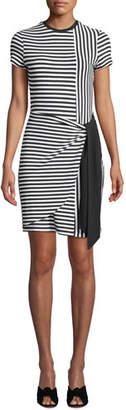 Parker Hermosa Crewneck Short-Sleeve Striped Combo Dress