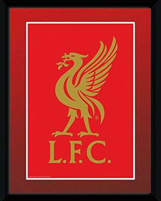 GB eye 8 x 6-inch Liverpool Crest Framed Photograph, Assorted