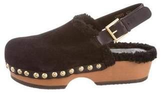 Alexander McQueen Round-Toe Platform Clogs