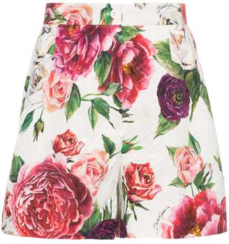 Dolce & Gabbana peonie print brocade shorts