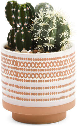 9in Faux Cactus In Terra Cotta Pot