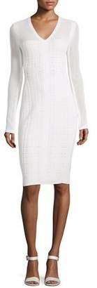 Narciso Rodriguez Long-Sleeve V-Neck Grid Dress