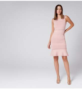 Ever New Lola Pointelle Peplum Dress