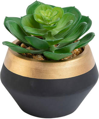 Linea Furniture 10cm Potted Faux Echeveria Plant