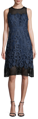 Mesh Embroiderd A-Line Dress $168 thestylecure.com