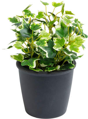 Linea Furniture 22cm Potted Faux Ivy Plant