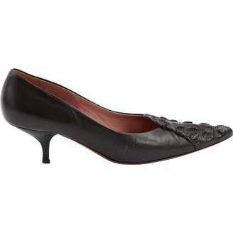 Alaia Brown Alligator Heels