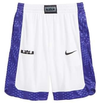 Nike Lebron Dry Shorts