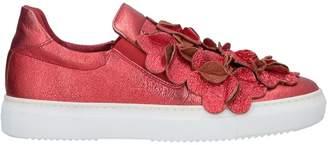 Aurora Sneakers