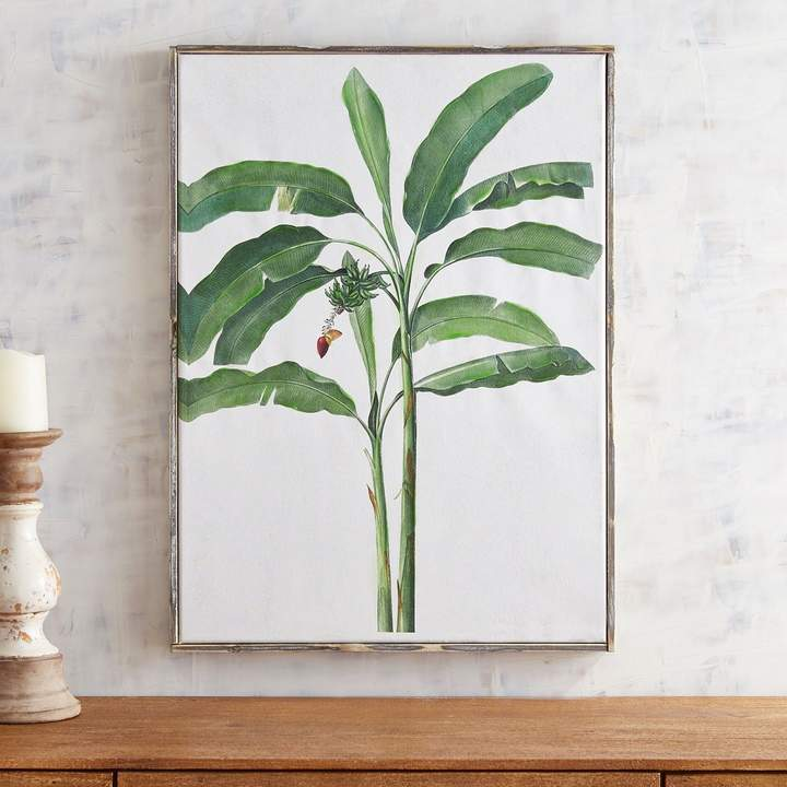 Banana Tree Framed Art