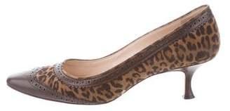 Manolo Blahnik Leopard Round-Toe Pumps