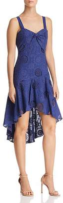 Parker Donna Lace Dress