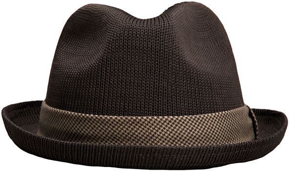 Rvca Thompson Fedora