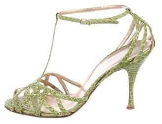 Dolce & Gabbana Snakeskin T-Strap Sandals