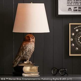Pottery Barn Teen Harry Potter Hedwig L